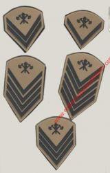 Divisas Caqui Emborrachadas Bombeiro Militar (PAR)